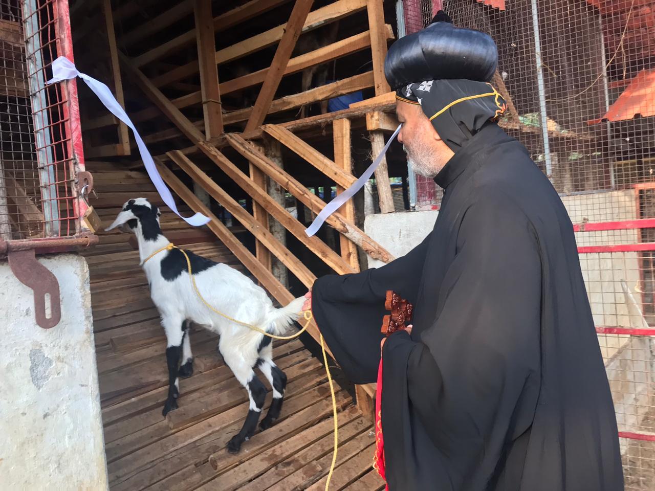 Chethana Goat Farm